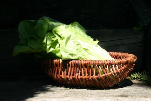 Kosz z wikliny naturalnej LKZ (GABA LKZ 28/BK)